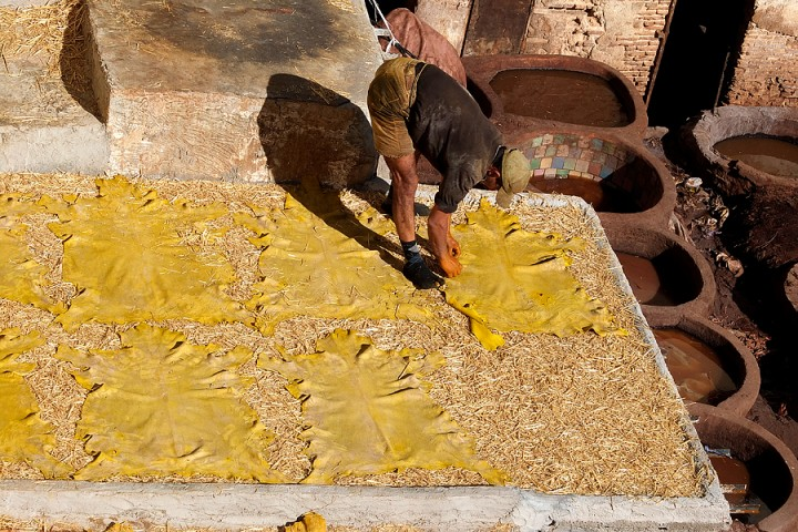 Laying the hides out to dry