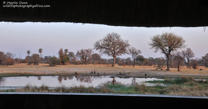 An early morning view of the waterhole at Bomani Tented Lodge