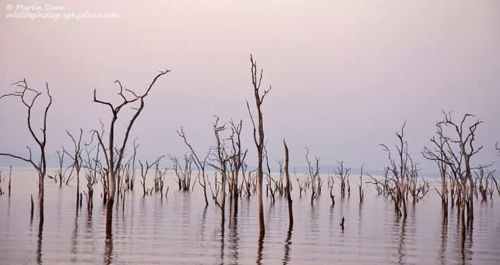 Typical view of Lake Kariba
