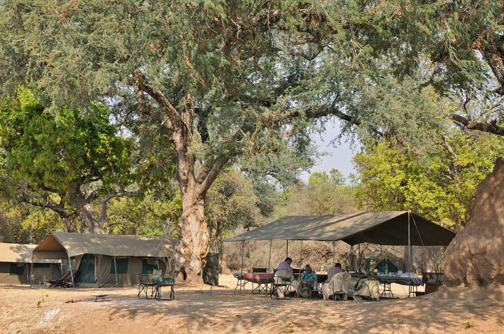 Our camp on the banks of the Zambezi