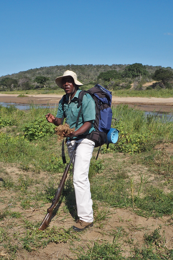 our Guide, Sebelo