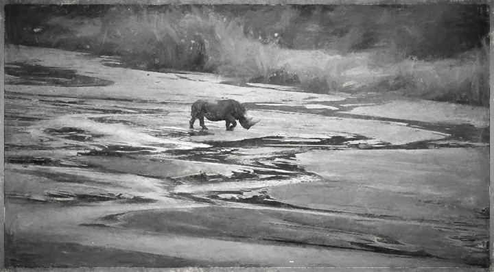 Rhino crossing the river - Charcoal