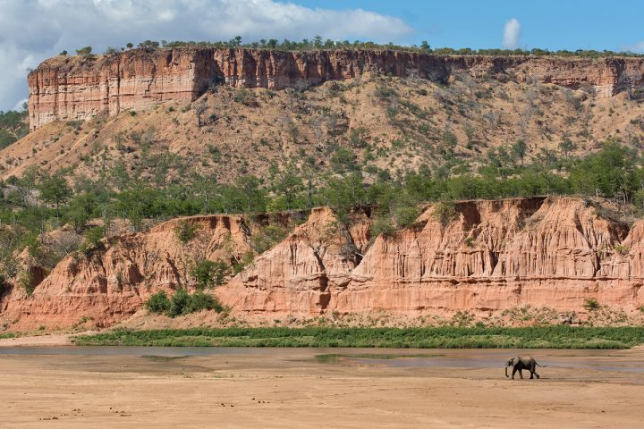 Even the elephants are dwarfed by the towering Chilojo Cliffs