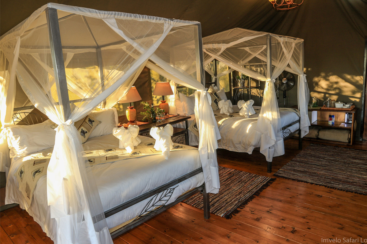 Guest Tent Interior - Hwange
