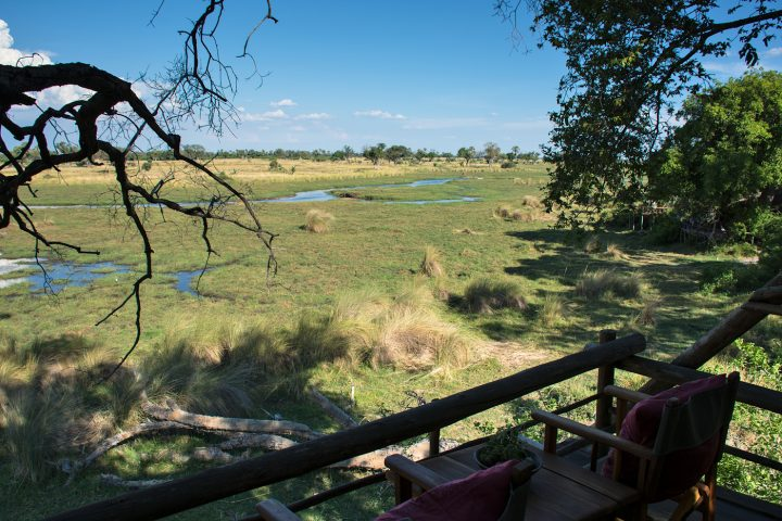 Treehouse view, Delta Camp, Okavango Delta