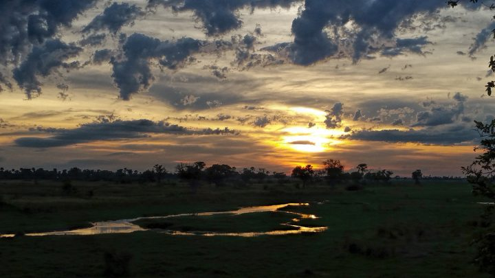 Sunrise over Chief's Island, Okavango Delta