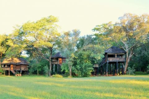 Ivory Lodge, view of guest rooms from gardens