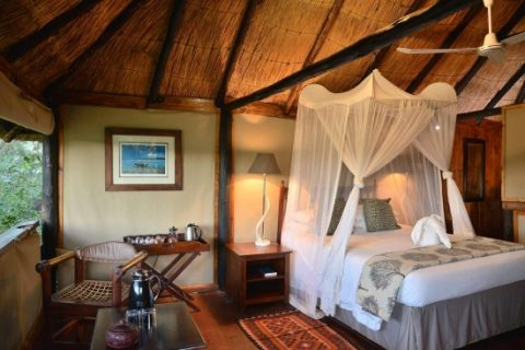 Ivory lodge, guest room
