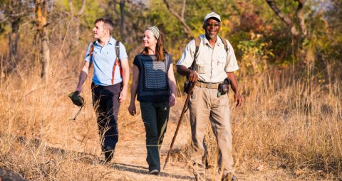 game walk at kaingu safari lodge
