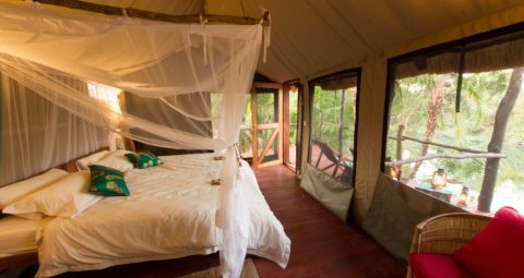 guest accommodation, kaingu safari lodge, kafue np