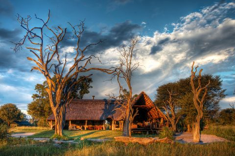 Bomani Tented Lodge, hwange NP, Zimbabwe
