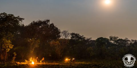 Kasonso Busanga at night with campfire