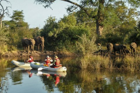 canoeing at Zambezi Sands