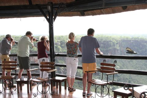 Photographing Verraux's Eagle at Gorges Lodge, Victoria Falls