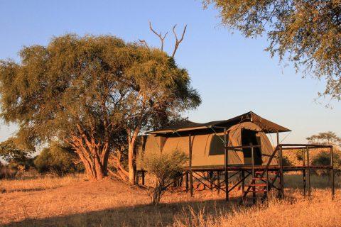 Guest tent, Jozibanini Camp, Hwange NP