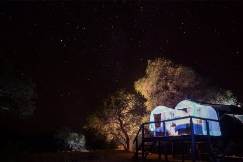 under the stars at Jozibanini Camp, Hwange NP