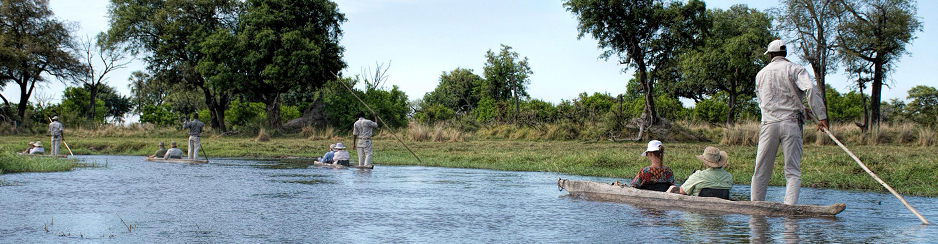 mokoros, Chief's Island, Okavango Delta, Botswana