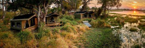 Oddballs, Chief's Island, Okavango Delta, family chalets