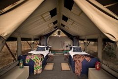 zambezi expeditions, twin bed guest tent