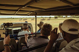game drive thamalakane river lodge
