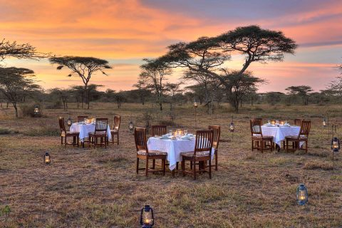 Dining out, Ndutu Safari Lodge