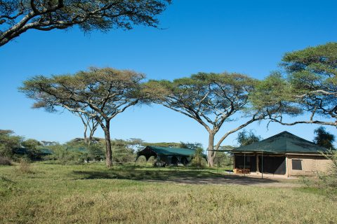 Kirurumu Camp, Ndutu