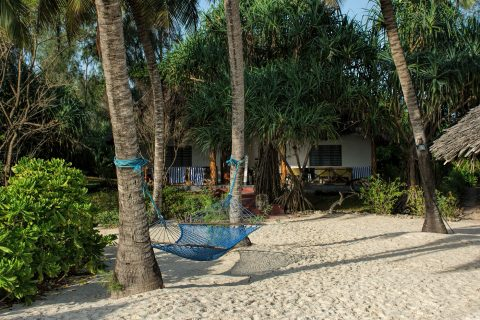 Pongwe Beach hotel beach front cottage with hammock