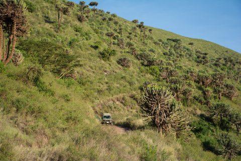 driving into Ngorongoro crater