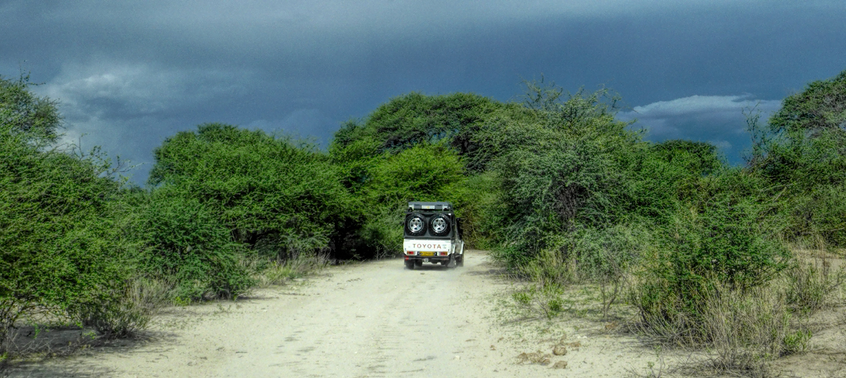 driving the back road to Chobe NP