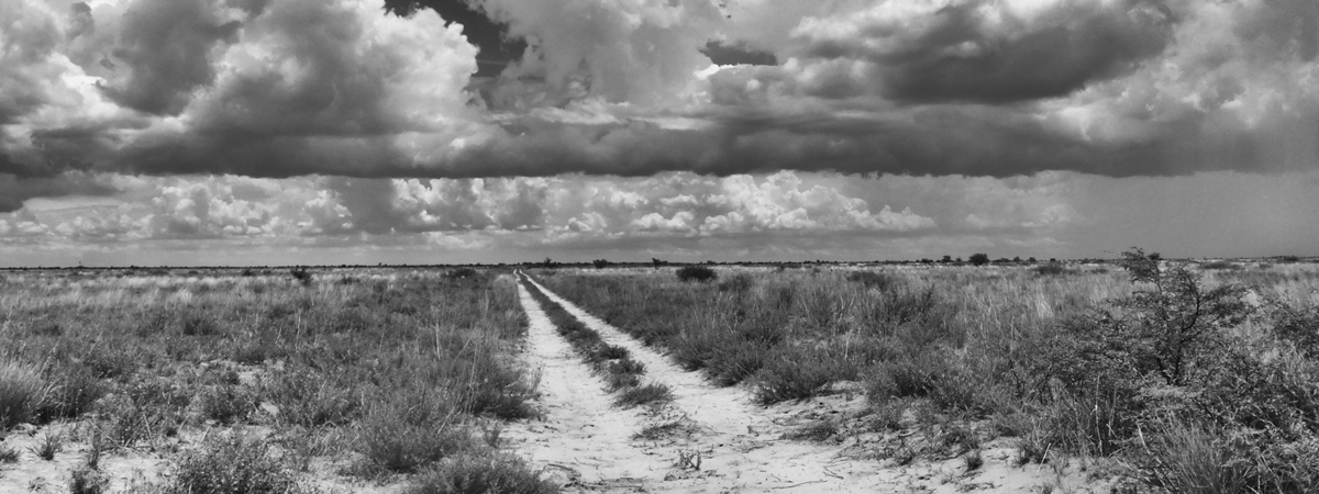storm clouds gather over Makgadikgadi Pans