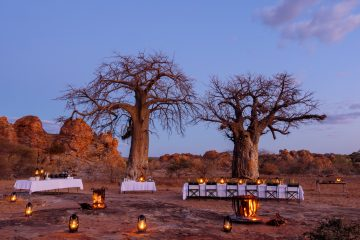 Dining under the baobabs at Tuli